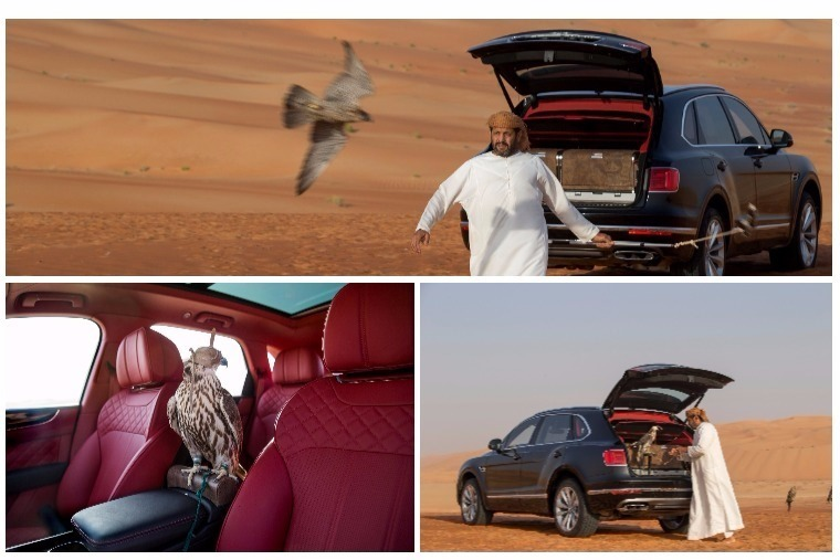 Another niche for the Bentayga... this time it's all about birds.