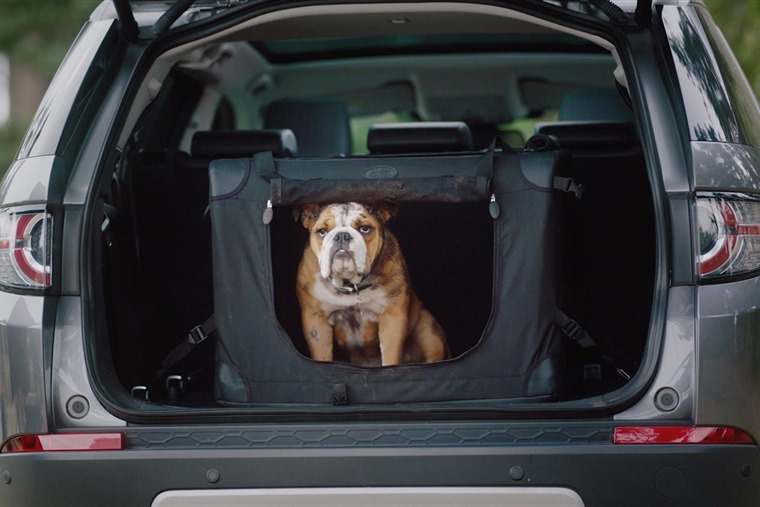 Land Rover launches pet pack